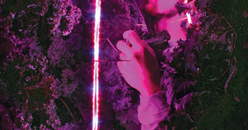 The red and blue LED lights that produce the perfect light for optimum photosynthesis require Mitch Hagney to wear sunglasses to harvest kale in his shipping container vertical farm. Paula Christine Schuler